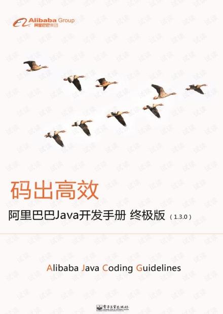 阿里java开发规约终极版.pdf