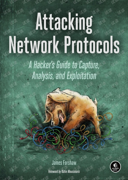Attacking Network Protocols A Hacker's Guide to Capture, Analysis, and 无水印原版pdf