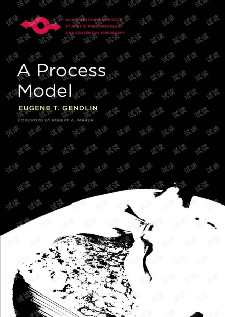 Northwestern University - A Process Model.2018.pdf
