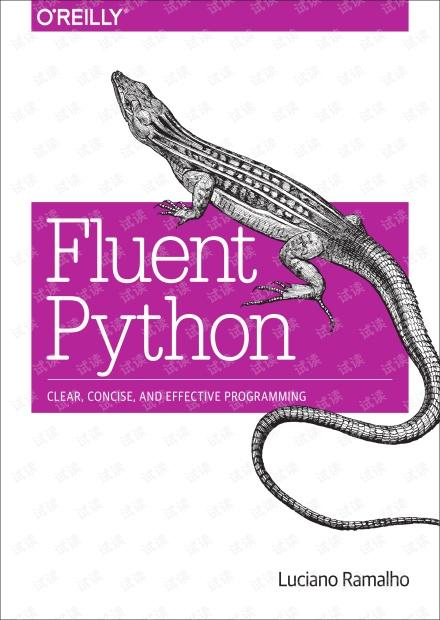 fluent python(非扫描版)