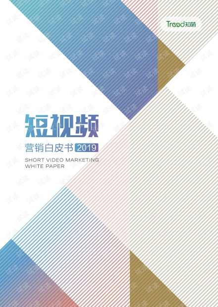 2019短视频营销白皮书.pdf
