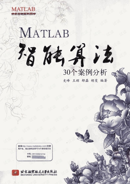 MATLAB智能算法