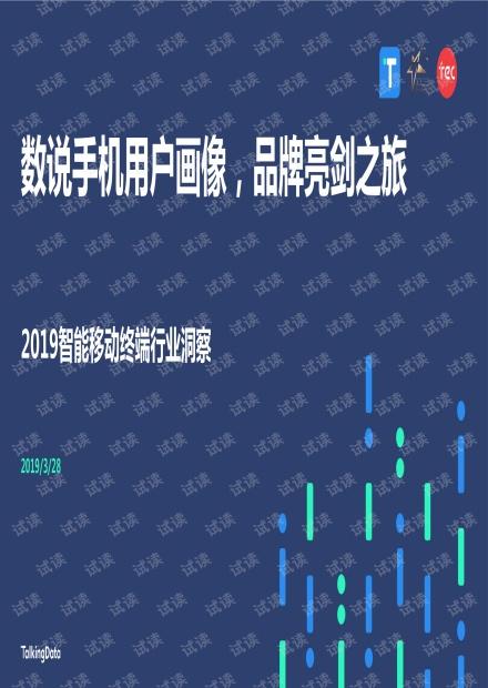 2019智能移动终端行业洞察.pdf