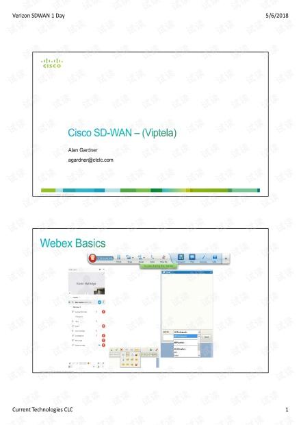 Viptela SDWAN Training.pdf