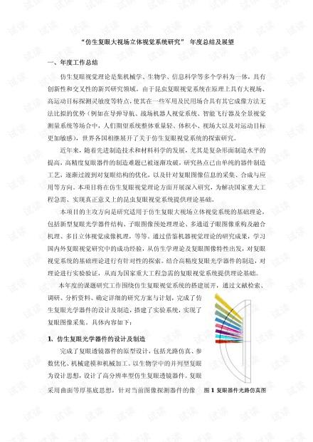 仿生复眼微型成像系统.pdf