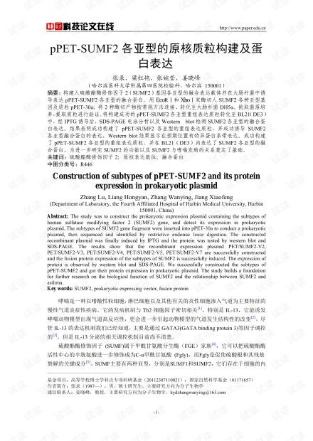 pPET-SUMF2各亚型的原核质粒构建及蛋白表达