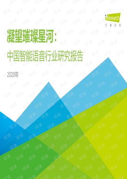 2020年中国智能语音行业研究报告.pdf