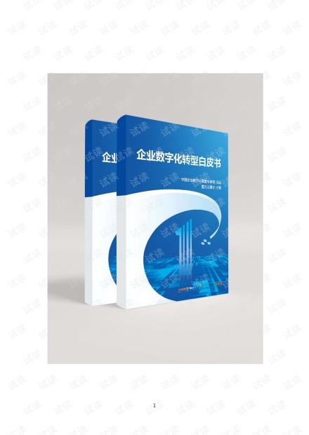 企业数字化转型白皮书.pdf
