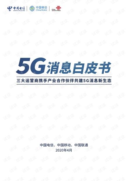 5G消息白皮书.pdf