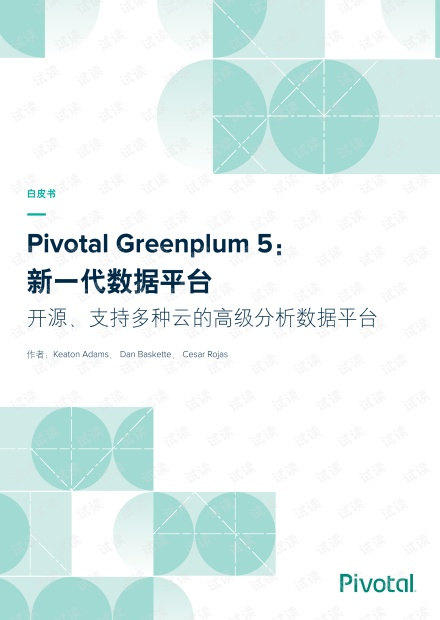 greenplum白皮书.pdf