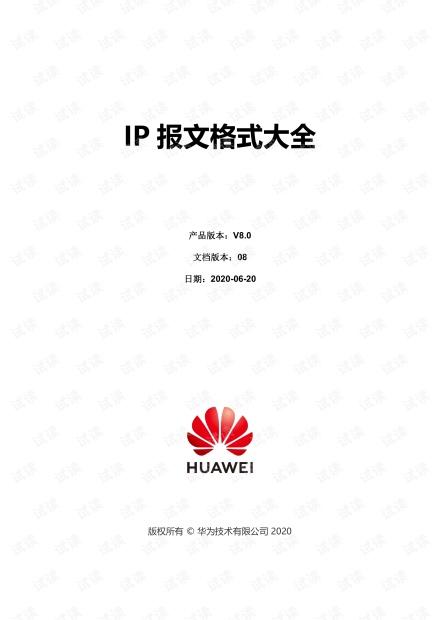 IP 报文格式大全 V8.0_08.pdf