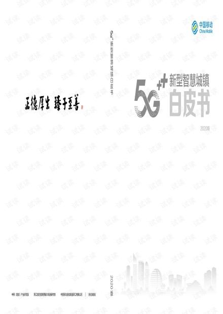 5G新型智慧城镇白皮书2020年.pdf