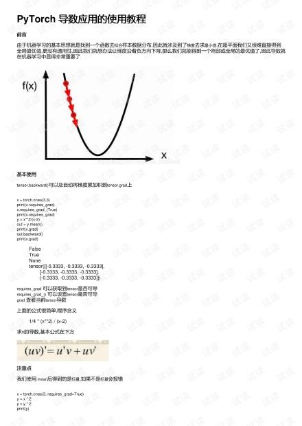 PyTorch 导数应用的使用教程