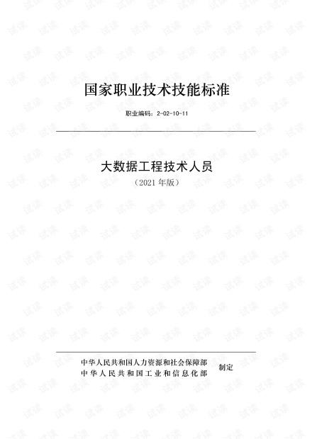 大数据工程技术人员.pdf