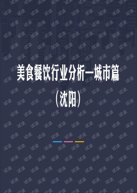 沈阳美食餐饮行业分析.pdf