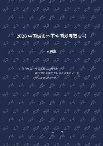 2020中国城市地下空间发展蓝皮书.pdf