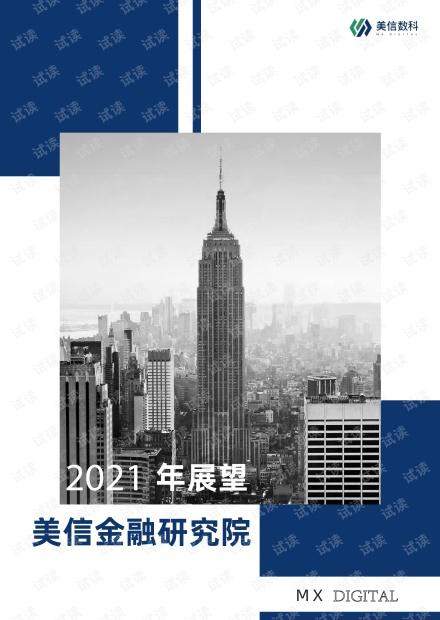 2021年全球投资展望报告-美信金融研究院.pdf