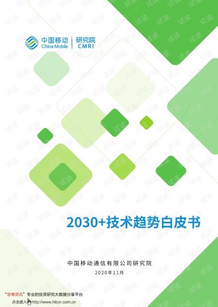 2030+技术趋势白皮书.pdf