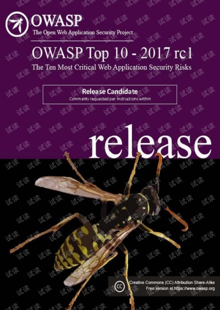 OWASP Top 10 2017.pdf