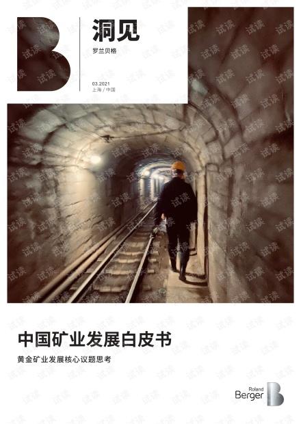 中国矿业发展白皮书——黄金矿业发展核心议题思考-罗兰贝格.pdf