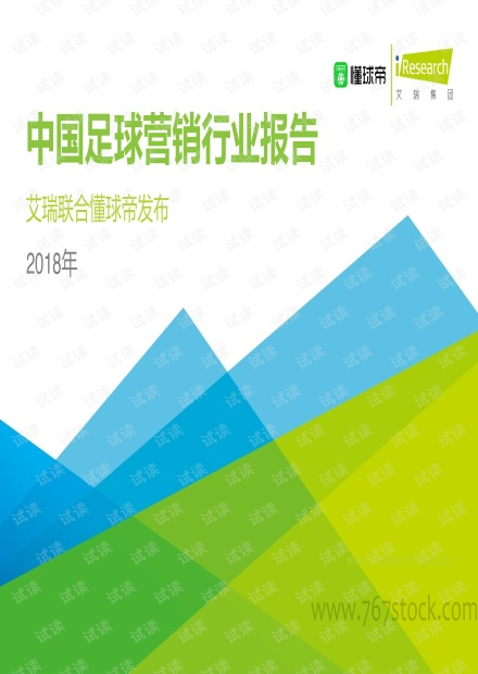 2018年中国足球营销行业报告