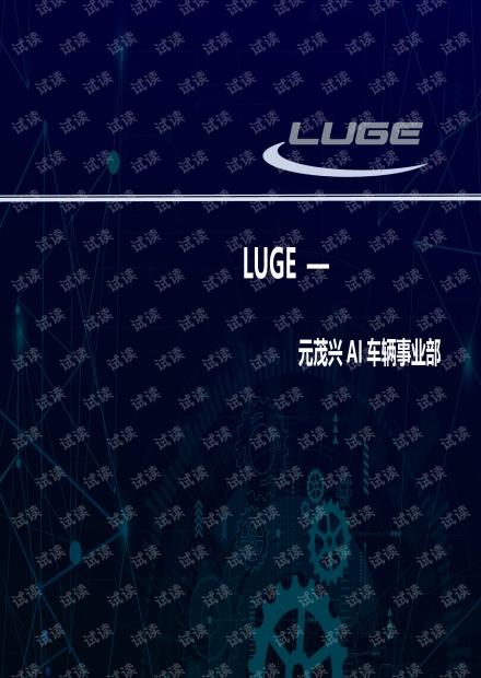 陆戈(LUGE)手持终端2020版(1).pdf