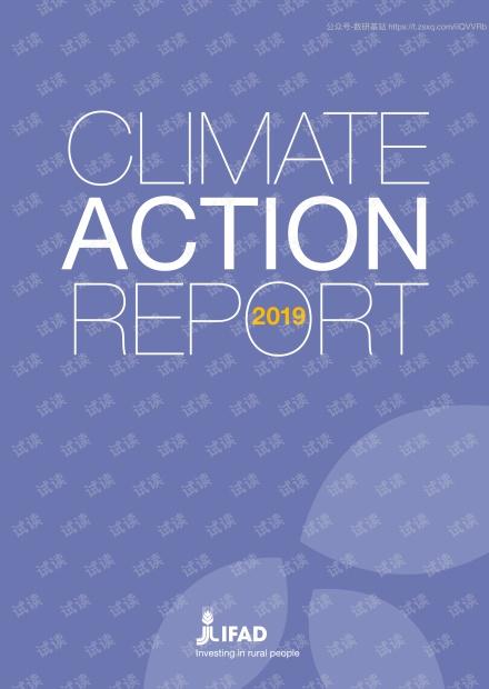 2019年气候行动报告(英文版).pdf