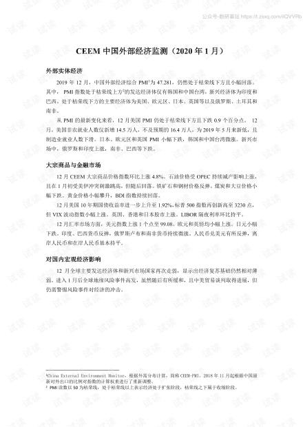 2020年1月中国外部经济监测.pdf