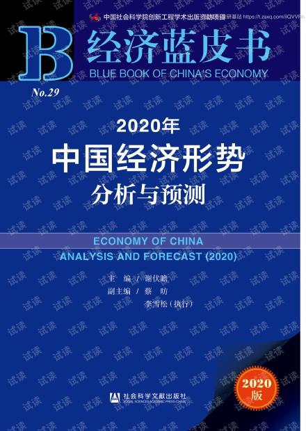 2020年中国经济形势分析与预测.pdf