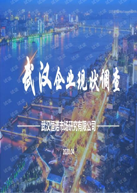 武汉企业现状调查报告-武汉恒诺-202004精品报告2020.pdf