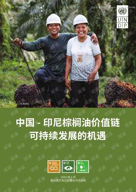 中国-印尼棕榈油价值链可持续发展的机遇精品报告2020.pdf