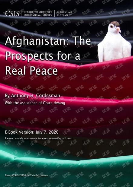 --IS-阿富汗:实现真正和平的前景(英文)-2020.7-174页精品报告2020.pdf