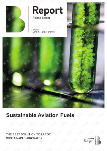 可持续航空燃料(英文版)精品报告2020.pdf
