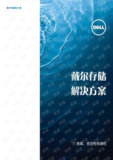戴尔存储解决方案手册.pdf