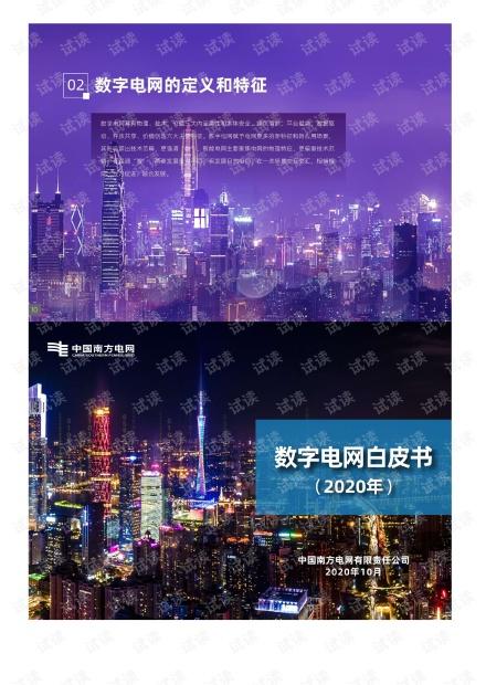数字电网白皮书.pdf