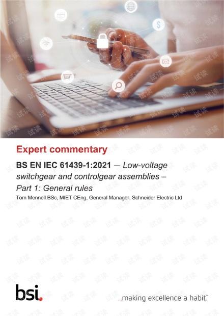 BS EN IEC 61439-1-2021 Expert Commentary.pdf