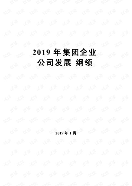 2019年集团公司公司发展纲领.pdf