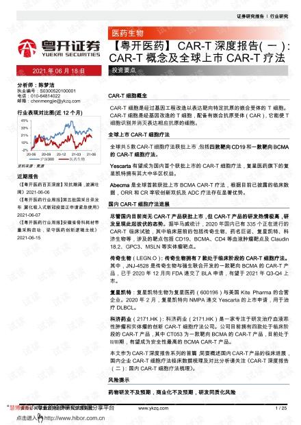 20210618-粤开证券-【粤开医药行业】_CAR~T深度报告(一):CAR~T概念及全球上市CAR~T疗法.pdf