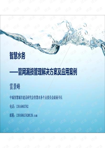 管网漏损管理解决方案及应用案例.pdf