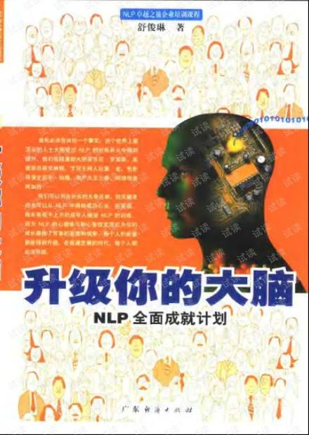 升级你的大脑:nlp全面成就计划