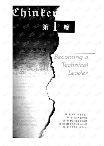 技术领导之路:全面解决问题的途径