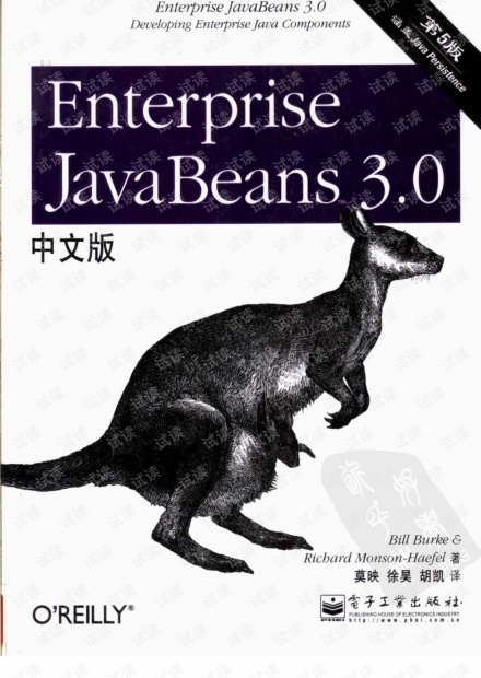 Enterprise JavaBeans 3.0 第五版.pdf