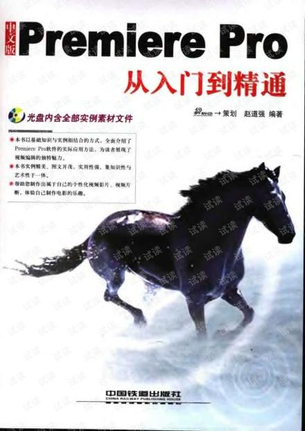 中文版Premiere.Pro从入门到精通.pdf