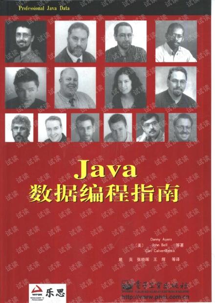 Java数据编程指南