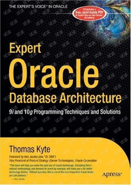 Oracle大师Thomas Kyte的好书.pdf