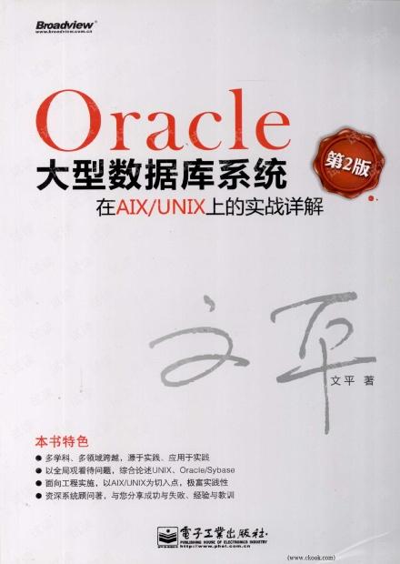 Oracle大型数据库系统在AIX UNIX上的实战详解(第2版)(文平)高清PDF扫描版