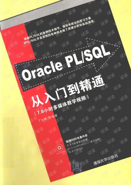 Oracle PL SQL从入门到精通 pdf电子书