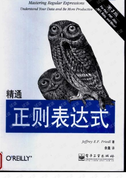精通正则表达式(第三版).(美)佛瑞德. PDF 扫描版