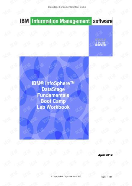 DataStage_Fundamentals_All_Labs.pdf