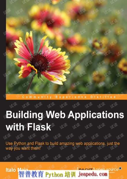 Building Web Applications with Flask.pdf